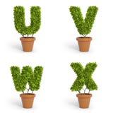 3D font pot plants. 3D font made out of pot plants Stock Images