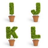3D font pot plants Stock Image