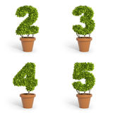3D font pot plants Stock Photo