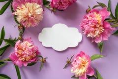 3 d formie ram trzy piękne wymiarowej ilustracji bardzo roczne Różowe peonie na purpurowym tle Fotografia Stock