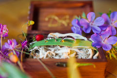 3d frambragt bildcirkelbröllop Royaltyfri Foto