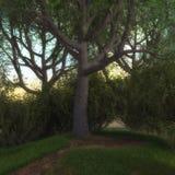 3D framför av en förtrollande kant för felik skog vektor illustrationer