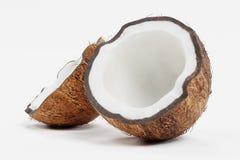 3d framför av kokosnöten vektor illustrationer