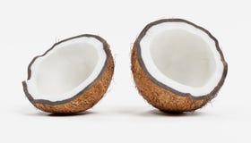 3d framför av kokosnöten stock illustrationer