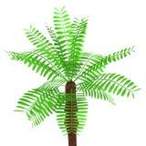 3d framför av palmträdet royaltyfri illustrationer