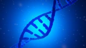 3D framförde illustrationen av en DNAspiral vektor illustrationer