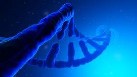 3D framförde illustrationen av en DNAspiral royaltyfri illustrationer