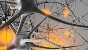 3D framförde illustrationen av signalöverföringen i ett Neuronal royaltyfri fotografi