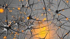 3D framförde illustrationen av signalöverföringen i ett Neuronal arkivbild