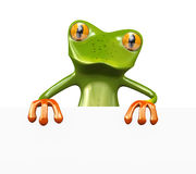 3d frog empty board Stock Photo