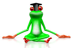 3D frog - student Royalty Free Stock Photo
