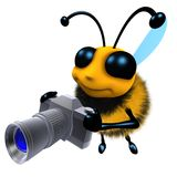 3d Funny cartoon honey bee character holding a camera vector illustration