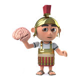 3d Funny cartoon Roman soldier in armour character holds a human brain Royalty Free Stock Photo