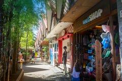D-galleriasouvenir shoppar i Boracay, Aklan, Filippinerna Royaltyfria Foton