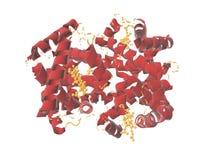 3D geef hemoglobine HHO voor illustratie terug royalty-vrije illustratie