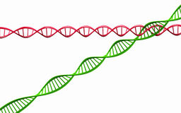 3d geef terug, geïsoleerd Model van verdraaide DNA-ketting. Stock Foto
