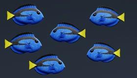 3D geef van Blauw Tang Fish terug Stock Foto's