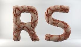 3D geef van Brain Alphabet terug vector illustratie