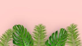 3D geef van realistische palmbladen op roze achtergrond voor kosmetische advertentie of manierillustratie terug Tropisch exotisch stock afbeeldingen