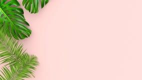 3D geef van realistische palmbladen op roze achtergrond voor kosmetische advertentie of manierillustratie terug Tropisch exotisch stock foto's