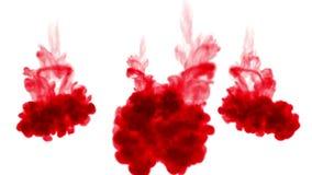 3d geef van rode inkt terug oplost in water op witte achtergrond met lumasteen als alfakanaal voor visuele gevolgen en gemakkelij stock video