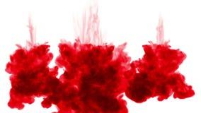 3d geef van rode inkt terug oplost in water op witte achtergrond met lumasteen als alfakanaal voor visuele gevolgen en gemakkelij stock videobeelden