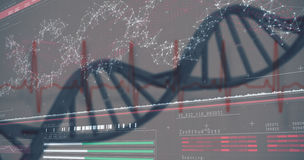 3D genes diagram on darkred background Stock Images