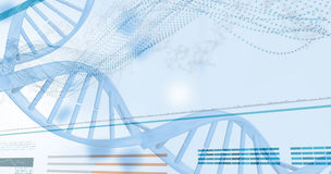 3D genes diagram on white background Royalty Free Stock Photography