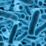 3d Germs Stock Photos
