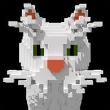 3d gezicht van de voxel witte kat Stock Foto