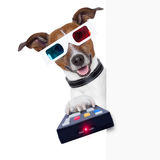 3d glasses movie dog Stock Photo