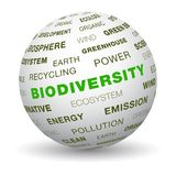 3d globe - biodiversity. Word tag cloud on 3d sphere. Biodiversity concept Stock Photography