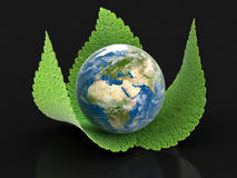 3d Globe on leaves Stock Photography