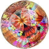 3D Glossy button with colorful fractal butterfly Stock Photography