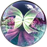 3D Glossy button with colorful fractal butterfly Royalty Free Stock Photography