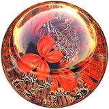 3D Glossy button with colorful fractal butterfly Stock Photos