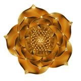 3D gold flower isolated on white background 3D illustration. 3D gold flower isolated on white background 3D illustration vector illustration