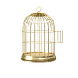 3d golden birdcage Royalty Free Stock Image