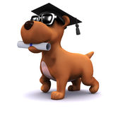 3d Graduate puppy. 3d render of a dog wearing a mortar board and carrying a scroll in his mouth Royalty Free Stock Photos
