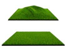 3d gras op witte achtergrond Stock Foto's