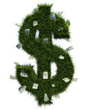 3D grass dollar shape Royalty Free Stock Image