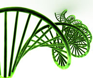 3d green DNA concept Stock Photography