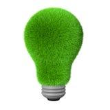 3d green grass idea bulb Stock Photography