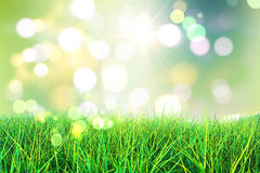 3D green grass Stock Photo