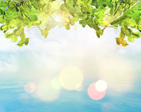 3D green leaves on bokeh lights background. 3D render of green leaves on a sunny bokeh lights background Stock Image