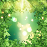 3D green leaves border. 3D render with a green leaves border on a bokeh lights background Stock Images