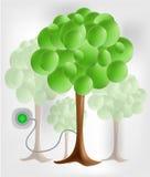 3d groene boom met elektrocontactdoos Stock Afbeeldingen