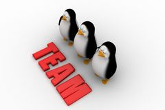 3d group of penguin with team text illustration Royalty Free Stock Photo
