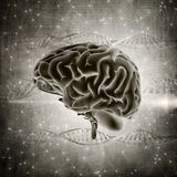 3D grunge style brain image on a DNA strands background Royalty Free Stock Photo
