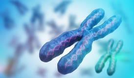 3D ha reso l'illustrazione dei cromosomi Concetto della genetica Immagini Stock